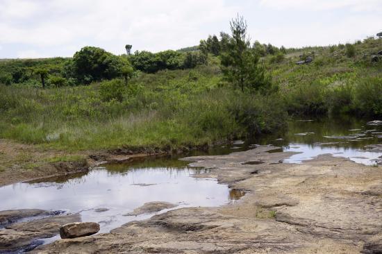 Graskop, جنوب أفريقيا: Stream Flowing Into Gorge