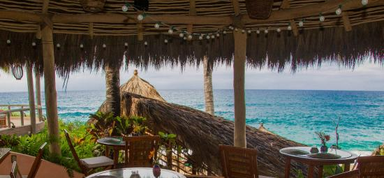 Terraza Dining Restaurant Picture Of Playa Escondida