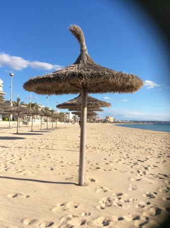 Apartaments Delfin: Beach