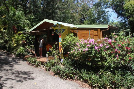 Acceuil picture of au jardin des colibris deshaies for Au jardin review