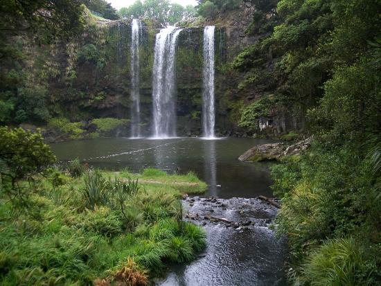 Whangarei, Nueva Zelanda: View of waterfall from bottom