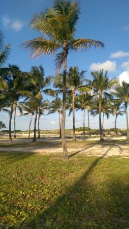 Metropole South Beach Hotel Miami Fl