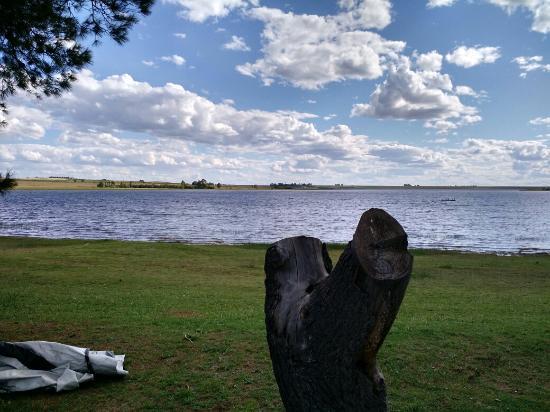 Laguna puan