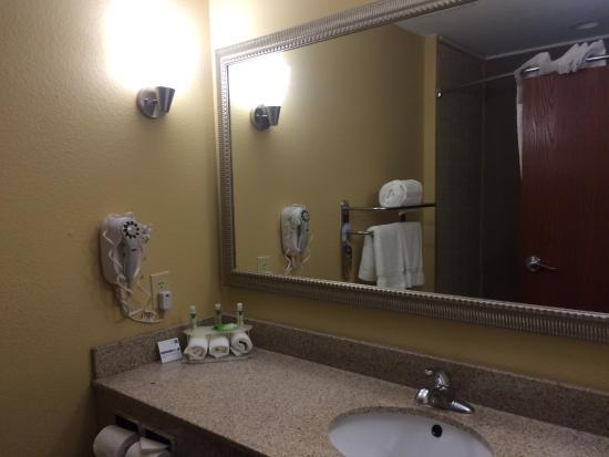 Holiday Inn Express & Suites Bonifay : Bathroom