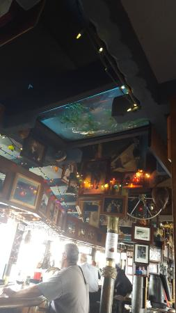 Turk's: Fish tank on the ceiling!