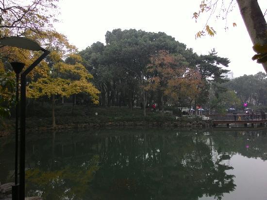 Suzhou Park : P_20151129_084445_large.jpg