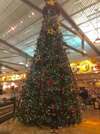Bass Pro Shops (Foxboro, MA): Top Tips Before You Go (with Photos ...