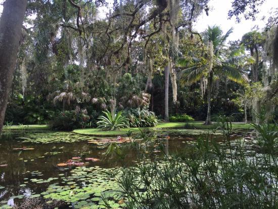 Picture Of Mckee Botanical Garden Vero Beach Tripadvisor