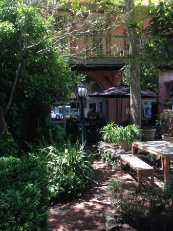 Camperdown, Australia: Our courtyard