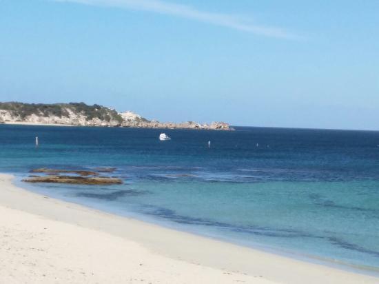 Hamelin Bay, Avustralya: IMG_20151127_073041_large.jpg
