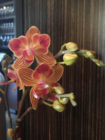 Tamarine Restaurant : photo9.jpg