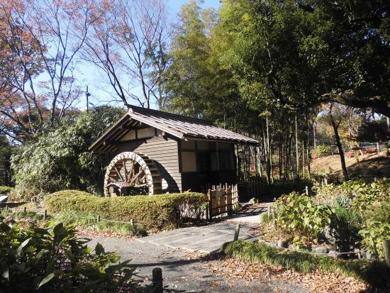 พิพิธภัณฑ์ ฟุจิโนะโมริ