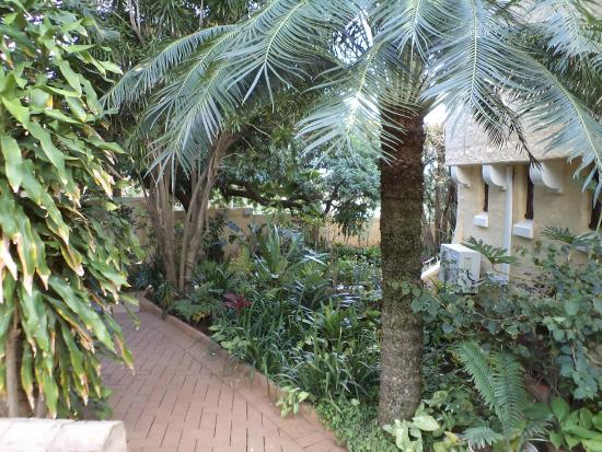Honeycomb Guest House: The garden pathway