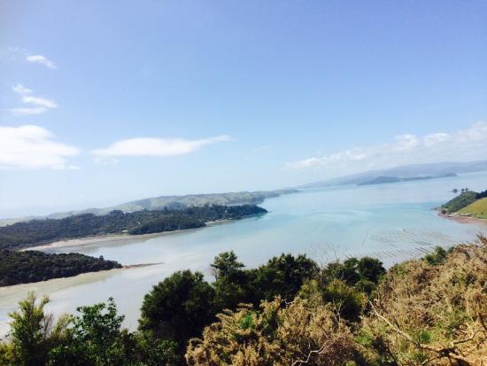 Waiheke Adası, Yeni Zelanda: photo0.jpg