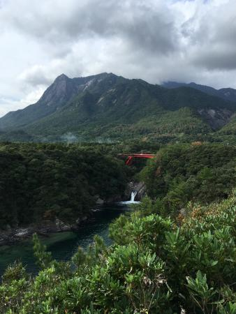 Yakushima Botanical Research Park
