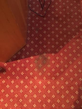 Hotel Kriemhild: Floor stain