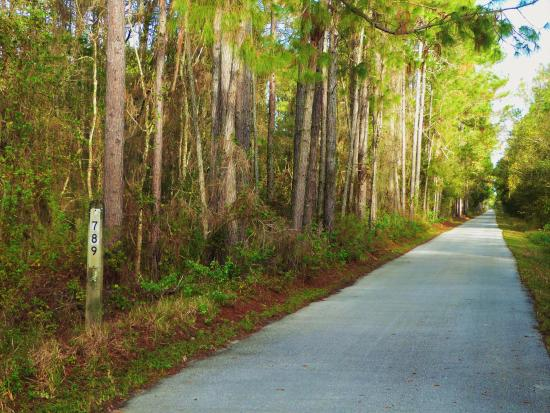 Polk City, FL: 789 miles to Richmond