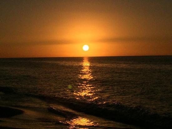 Cayo Costa State Park: photo0.jpg