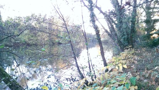 Rheinhausen, Jerman: 静かな川