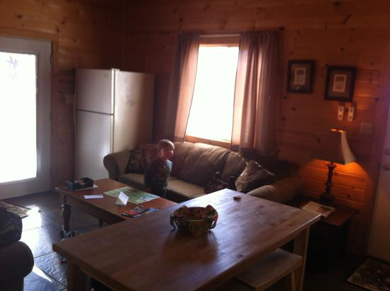 Cabins at Sugar Mountain: View of the pull out sofa and fridge