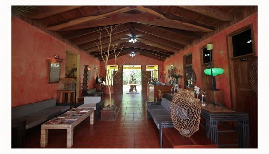 Hotel Paraiso Carlisa照片