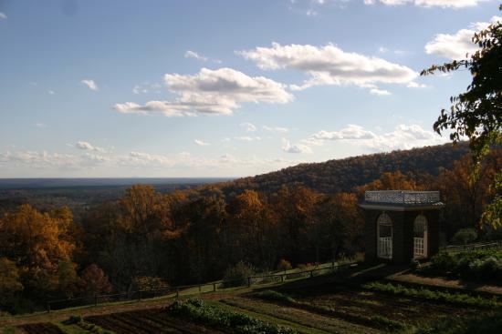 Charlottesville, Βιρτζίνια: View