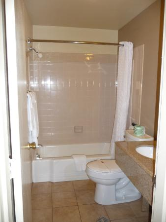 Budget Host Inn Charleston: Nice size bathroom