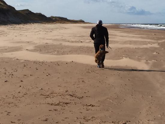 Cranford Inn: A walk on the beach with Quinn