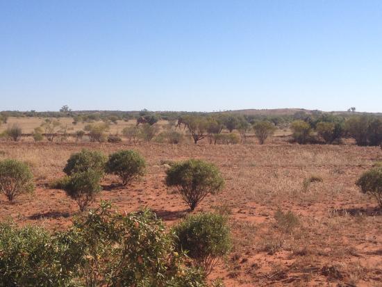 Finke, Australia: Desert Scene