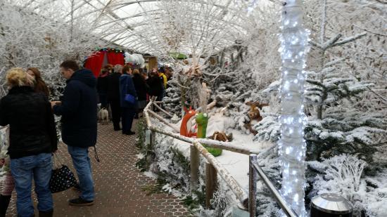 Brent Knoll, UK: Christmas scene