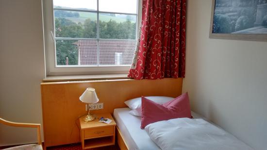 Landgasthof Hotel Hess: ВИД ИЗ ОКНА  и кровать
