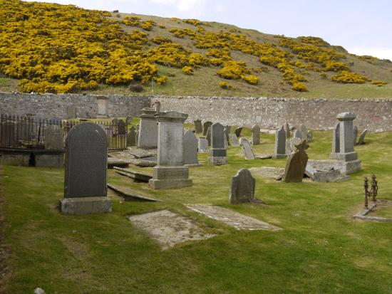 Gardenstown, UK: more stones and gorse at St Johns