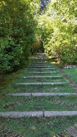 Palazzo farnese il giardino segreto foto di palazzo farnese caprarola tripadvisor - Il giardino segreto roma ...