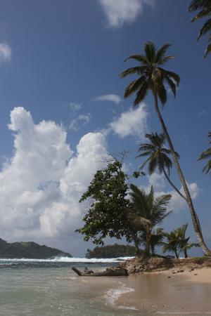 Bambu Guest House: De eilanden aan de overzijde