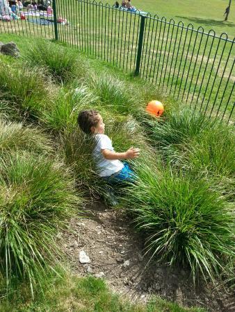 Devonport Park: THE BOY LOVES THIS PARK!!