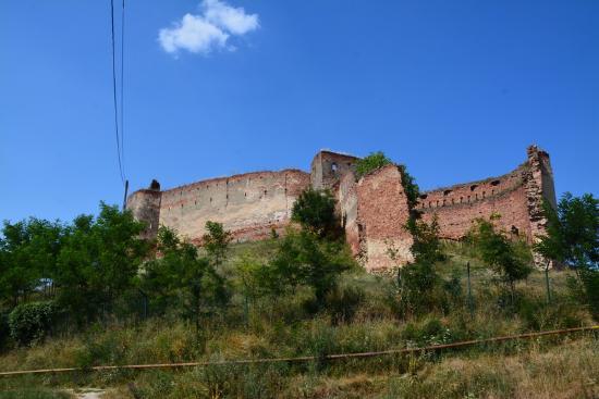 Slimnic Citadel: .