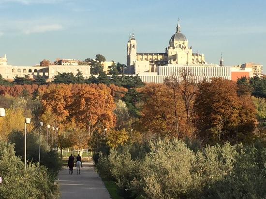 SegCityTours: Uitzicht vanuit park
