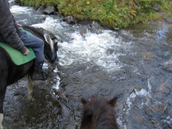 Коммуна Холь, Норвегия: door snelstromend water