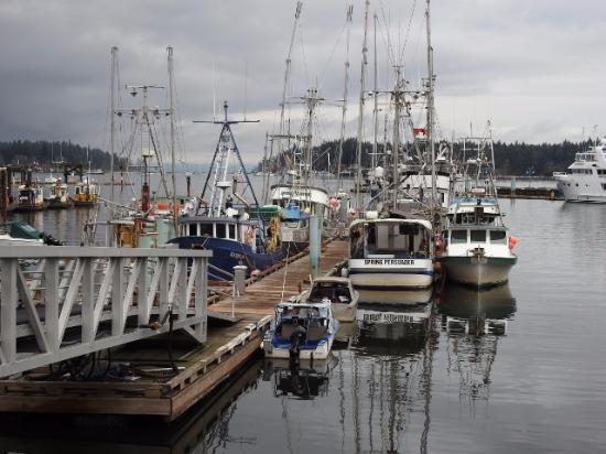 Nanaimo, Canada: Dock and Boats