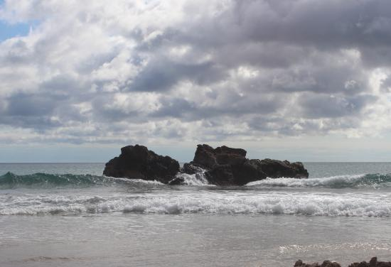 Coromandel Adventures - Day Tours: View from Hot Water Beach