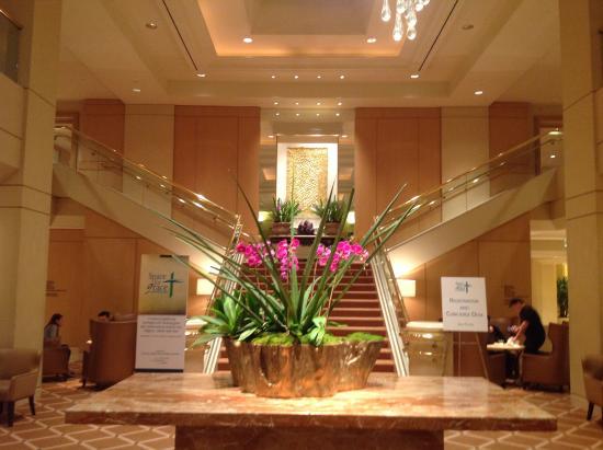 Hilton Lax Hotel Reviews