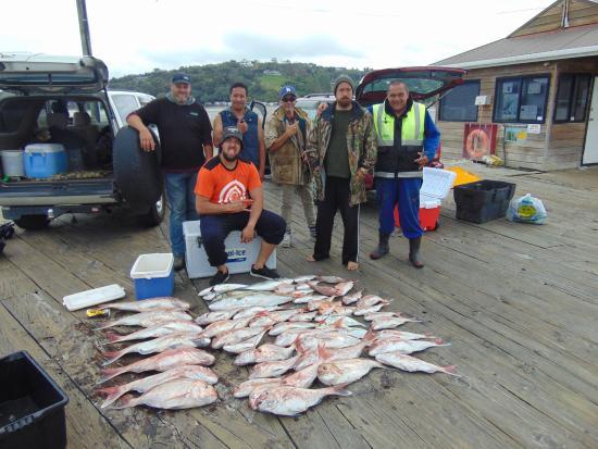 Warkworth, Nueva Zelanda: Sandspit Fishing Charters - Saturday 28 Nov 2015 - Day Trip