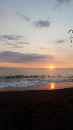 Terraza del Pacifico : 20151128_171203_large.jpg