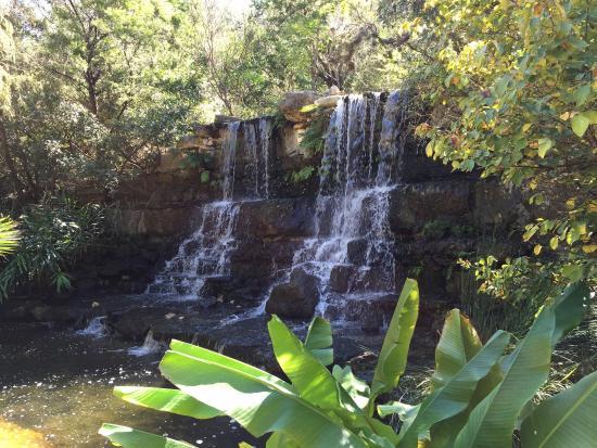 Picture Of Zilker Botanical Garden Austin