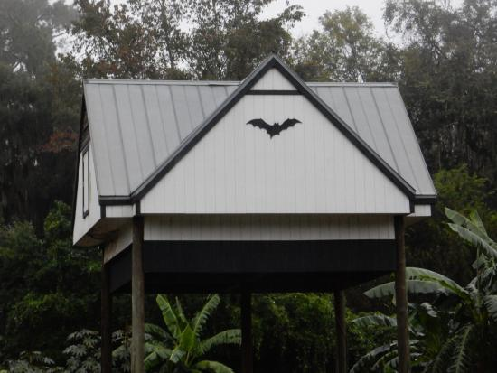how to keep bats out of house