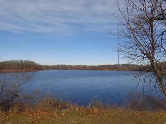 Chelsea, MI: Green Lake in late fall