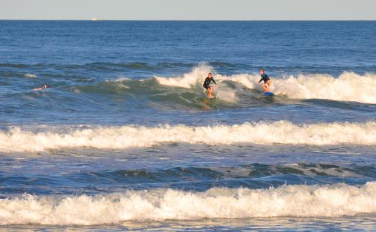 Horizons at Peregian : Surf's up across the road