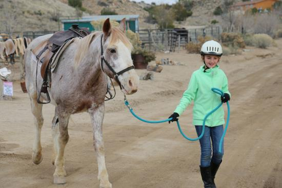 Cerrillos, NM: My daughter was able to lead and bridle her horse with really good instructions from the owner.