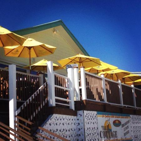 The Cottage Bar and Gulfshore Grill: Beachfront Dining!