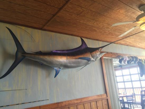 Interior decor, sword fish, THree Fishermen Seafood, North Fort Myers, Florida